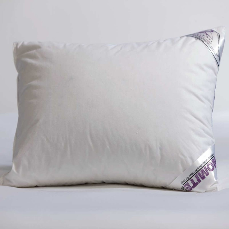 Pillow │ Baby Travel │ 32x45cm │ Duck Down Amp Feather │041